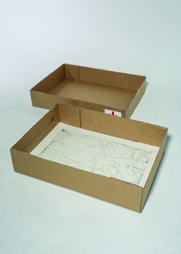 Nelson box crop